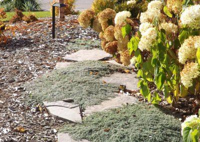 landscaping-calgary-DSCF3351